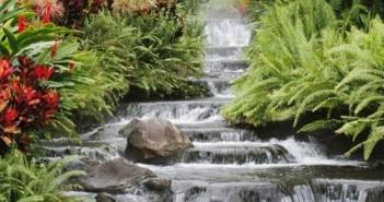 Bộ sưu tập những ảnh đẹp thiên nhiên thơ mộng và lãng mạn nhất 6