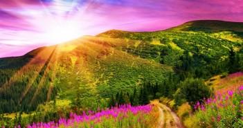 Những ảnh thiên nhiên đẹp lãng mạn làm say đắm lòng người 10