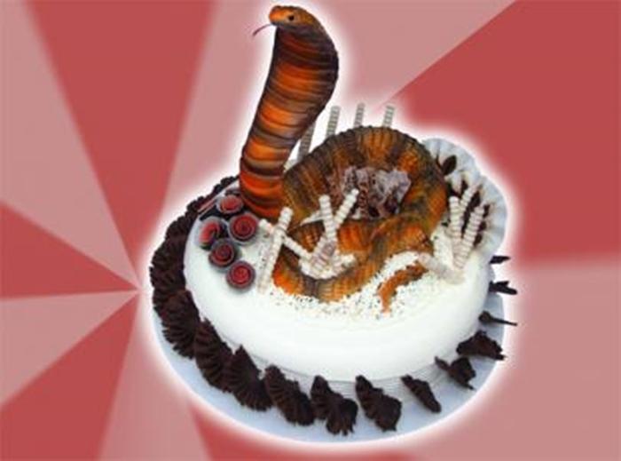 Những hình ảnh bánh sinh nhật hình con Rắn trong đáng yêu và dễ thương lắm nhé 3
