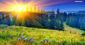 Những hình ảnh thiên nhiên tuyệt đẹp và ấm áp khi mùa xuân đến 1