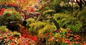 Những cảnh đẹp thiên nhiên thơ mộng lãng mạn nhất về mùa thu 11
