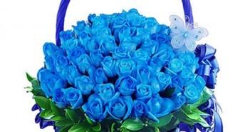 Những giỏ hoa hồng đẹp nhất dành tặng các bạn gái trong ngày lễ 20-10 8