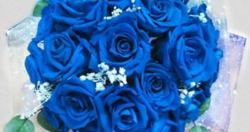 Những hình ảnh bó hoa tặng 20-10 rực rỡ và ấn tượng nhất 9