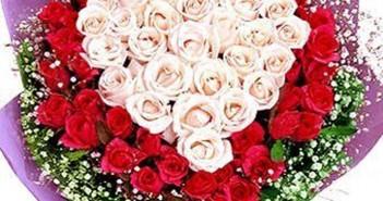Những hình ảnh hoa hồng tặng 20-10 cho bạn gái vô cùng lãng mạn 5