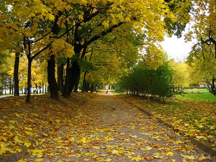 Những hình ảnh thiên nhiên Hà Nội về mùa thu lãng mạn và thơ mộng 9