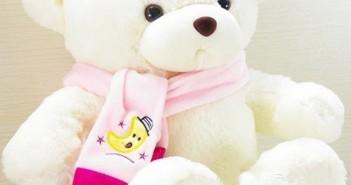 Những món quà ý nghĩa dành tặng 20-10 vô cùng đáng yêu và dễ thương 6