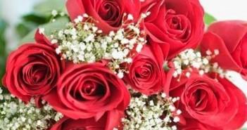 Hình ảnh hoa hồng dành tặng cô giáo thầy giáo nhân ngày 20-11 đẹp nhất mang nhiều ý nghĩa 1