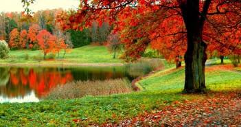 Những hình ảnh thiên nhiên đẹp bí ẩn và hoang dã nhất 3