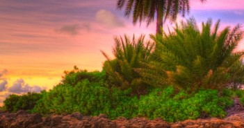 Những hình ảnh thiên nhiên đẹp và thơ mộng dành làm hình nền điện thoại 7