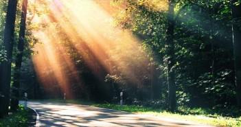 Những hình ảnh thiên nhiên đẹp và vô cùng huyền bí 3