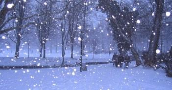 Những hình ảnh thiên nhiên đẹp với những bông tuyết trắng xóa 1