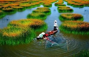 Những phong cảnh thiên nhiên đẹp và thơ mộng nhất Việt Nam 7