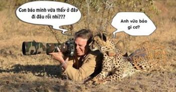 Tuyển tập những hình ảnh bựa hài hước nhất thế giới 2
