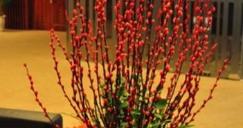 Cắm hoa ngày tết đẹp đơn giản mang nhiều may mắn tài lộc đến nhà 6