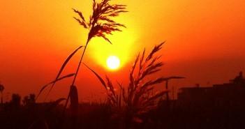 Hình ảnh hoàng hôn đẹp và yên bình sẽ khiến bạn cảm thấy sự thanh thản trong tâm hồn 9