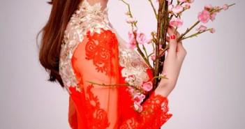 Hình ảnh Ngọc Trinh mặc áo dài duyên dáng chào xuân bính thân 2016 8