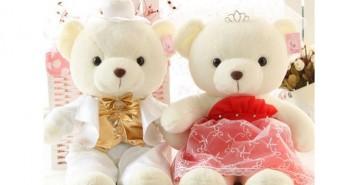 Hình ảnh những chú gấu teddy vô cùng dễ thương mà bạn sẽ thích ngay 9