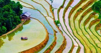 Hình ảnh ruộng bậc thang đẹp và thơ mộng nhất thế giới làm say đắm lòng người 2