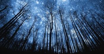 Những bức ảnh bầu trời đêm đầy sao đẹp lung linh huyền ảo 1