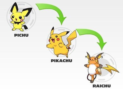 Hình ảnh pikachu tiến hóa mega đẹp cute dễ thương 5