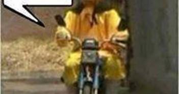 Hình ảnh tôn ngộ không chế đi xe máy ấn tượng nhất 5