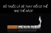 Cách bỏ thuốc lá nhanh nhất tự nhiên tại nhà thành công 1