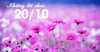 Lời chúc ngày phụ nữ Việt Nam 20-10-2016 hay ý nghĩa nhất 27