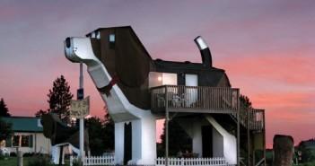 Những ngôi nhà đẹp độc đáo bậc nhất thế giới với thiết kế hình động vật 6